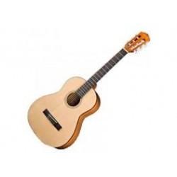 ESC105 Fender
