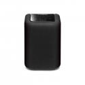 Enceinte portable YAMAHA MUSICCAST WX010