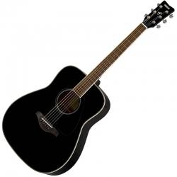 Guitare Folk acoustique FG820
